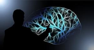 brain-3141247_1920